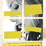RSU , Latella , Amore, Audino : perchè votare Unicobas